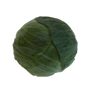 Green Cabbage can be grown and supplied whole or sliced
