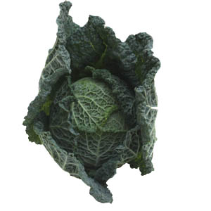 Savoy cabbage can be whole or sliced.
