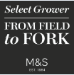 Marks and Spencer Field to Fork